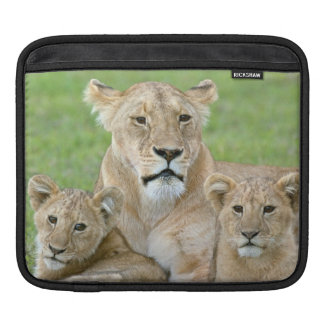 Lioness and Two Cubs, East Africa, Tanzania, iPad Sleeve