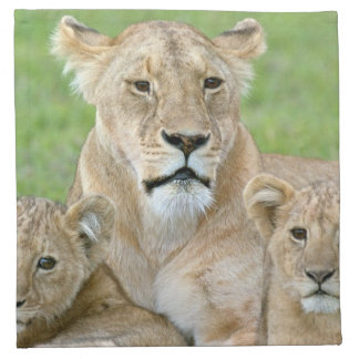 Lioness and Two Cubs, East Africa, Tanzania, Napkin