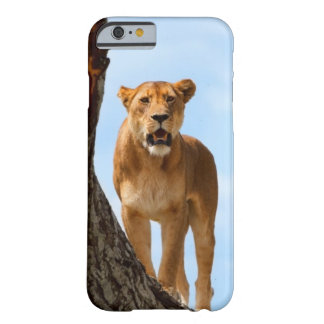 Lioness Barely There iPhone 6 Case