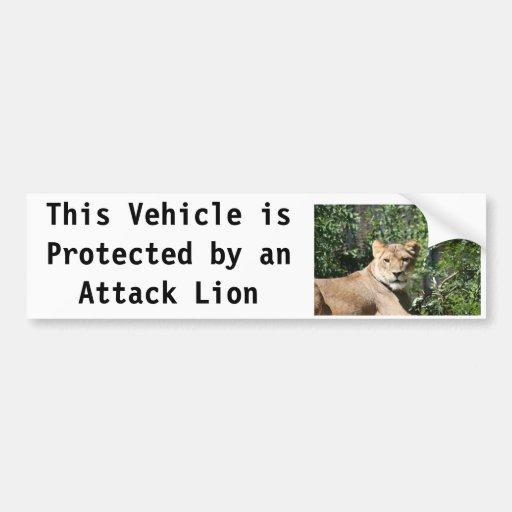 Lioness Bumper Stickers