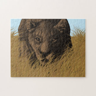 Lioness Hunting in Grass Puzzle