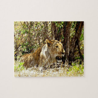 Lioness Jigsaw Puzzle