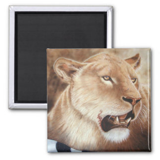 Lioness on her Kill Square Magnet