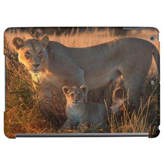 Lioness (Panthera Leo) And Cub