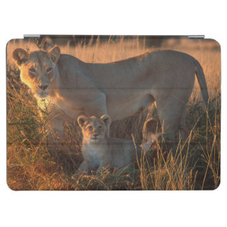Lioness (Panthera Leo) And Cub iPad Air Cover