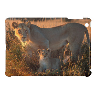 Lioness (Panthera Leo) And Cub iPad Mini Case