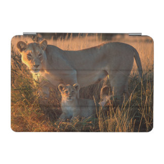Lioness (Panthera Leo) And Cub iPad Mini Cover