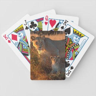 Lioness (Panthera Leo) And Cub Poker Deck
