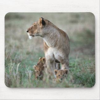 Lioness (Panthera leo) and cubs, Masai Mara Mouse Mat
