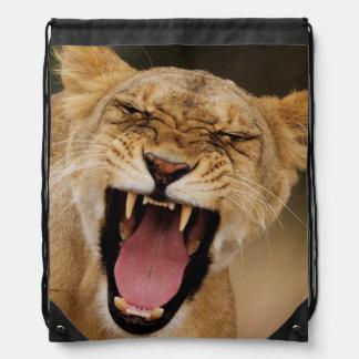 Lioness (Panthera Leo) Growling With Cub Drawstring Bag