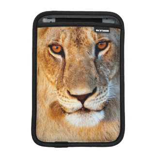 Lioness (Panthera Leo) Portrait. Tarangire iPad Mini Sleeve