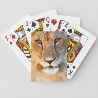 Lioness (Panthera Leo) Portrait. Tarangire Playing Cards