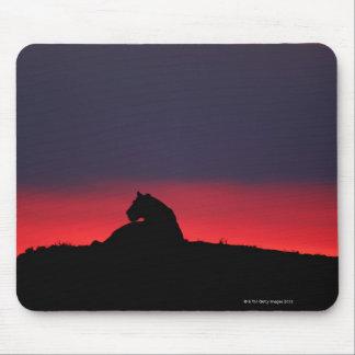 Lioness (Panthera leo) sitting, at sunset, Masai Mouse Mat