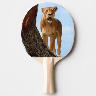 Lioness Ping Pong Paddle