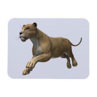 Lioness Rectangle Magnet