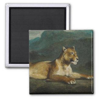 Lioness reclining c 1855 oil on panel fridge magnets