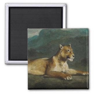 Lioness reclining, c.1855 (oil on panel) square magnet
