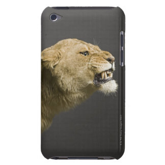 Lioness roaring 2 barely there iPod cases