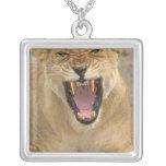 Lioness Snarl B, East Africa, Tanzania, Custom Necklace
