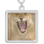 Lioness Snarl B, East Africa, Tanzania, Square Pendant Necklace