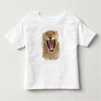 Lioness Snarl B, East Africa, Tanzania, Toddler T-Shirt