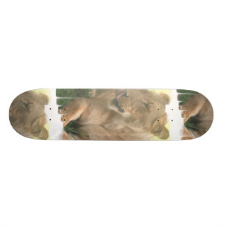 Lioness with Tongue Out Skateboard
