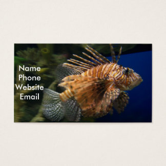Lionfish Profile Card