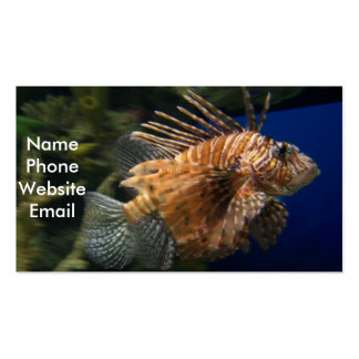 Lionfish Profile Card Pack Of Standard Business Cards