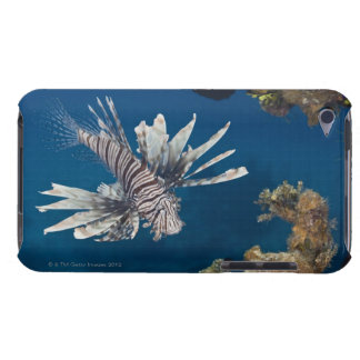 Lionfish (Pterois volitans) swimming over Barely There iPod Case