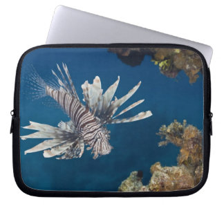 Lionfish (Pterois volitans) swimming over Laptop Sleeve