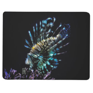 lionfish swims journals