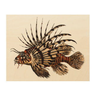 Lionfish Vintage Art Print Wood Canvases
