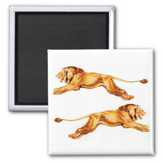 lions at cross purposes square magnet
