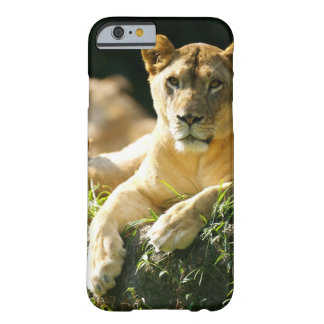 Lions Barely There iPhone 6 Case