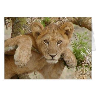 (Lions Clubs) Lion Cub (Ishasha, Uganda) Card
