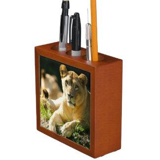 Lions Desk Organiser