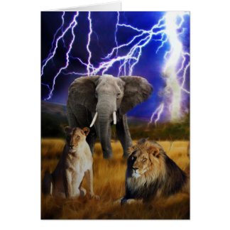 Lions Elephant South Africa Card