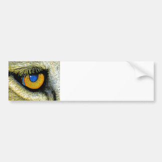 Lions Eye Close Up 2 Bumper Stickers