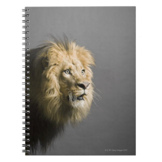 Lion's face spiral note book