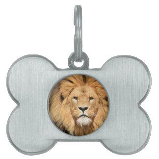 Lions Head Pet Tag