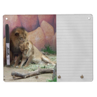 Lions in Love Dry Erase Whiteboard