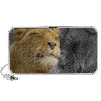 Lions in Love iPod Speaker