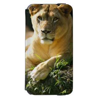 Lions Incipio Watson™ iPhone 6 Wallet Case