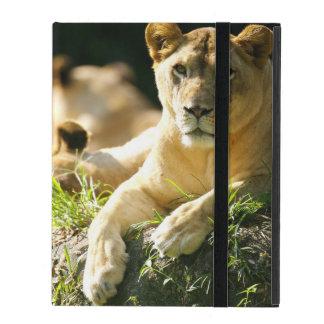 Lions iPad Folio Case