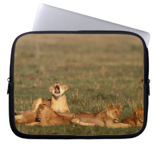 Lions on a savanna laptop sleeve