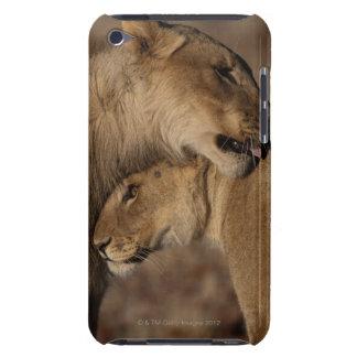 Lions (Panthera leo) pair bonding, Skeleton iPod Case-Mate Cases