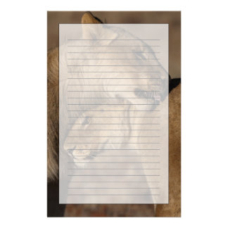 Lions (Panthera leo) pair bonding, Skeleton Personalised Stationery