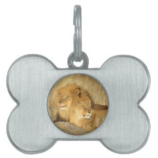 Lions Pet Name Tag