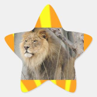 Lions Star Sticker