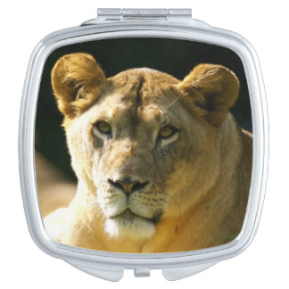 Lions Travel Mirror